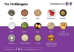 the 14 allergens