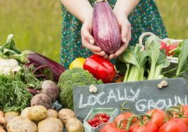 locally grown sustainable food